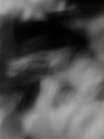 26_exuvies010_v2.jpg